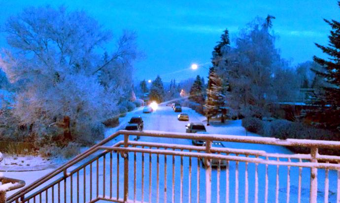 בוקר מושלג על גשר הרכבת. הפלאפון שלי מעוות את הצבעים למוות, אבל בכל זאת כללתי את התמונה הזו כדי שתוכלו להרגיש קצת את הקסם שמשתורר כשכל העצים לבנים משלג טרי, ופתיתים זעירים צפים באוויר.