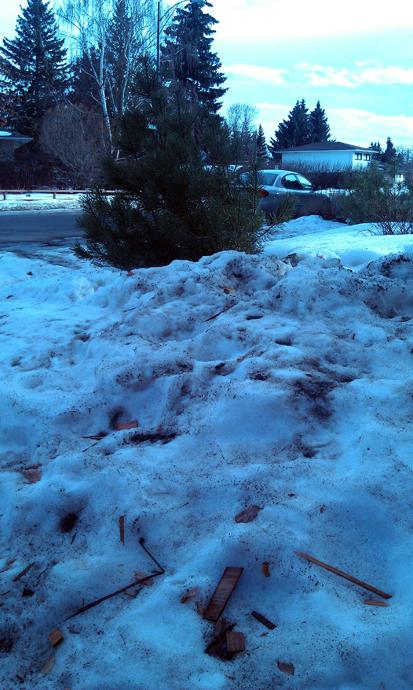 הפשרה אחרי שינוק. כל הגועל נפש שנסחף לתוך השלג והתבסס בו - נחשף כעת. זה השלג הכי מבחיס שיש!