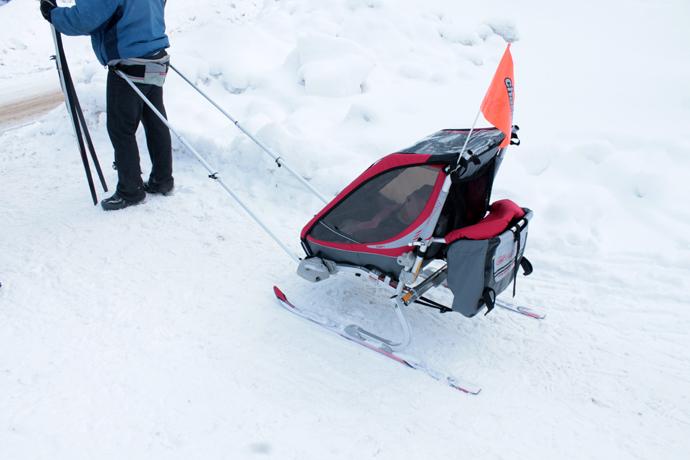 ככה הקנדים לוקחים תינוק ליום בילוי בשלג. לא רואים בתמונה, אבל ההורים בדיוק מתארגנים לחצות את הכביש, אחריו הם נועלים חזרה את מגלשי הסקי קרוס קאנטרי שלהם ויאללה לעסק. כשהילד הזה יהיה בן שלוש, הוא כבר ידדה על סקי משלו.האבא נתן לנו לצלם בכיף, והעיר בקנדיות אופיינית - הרי אי אפשר להשאיר אותם בפנים כל החורף, איי?