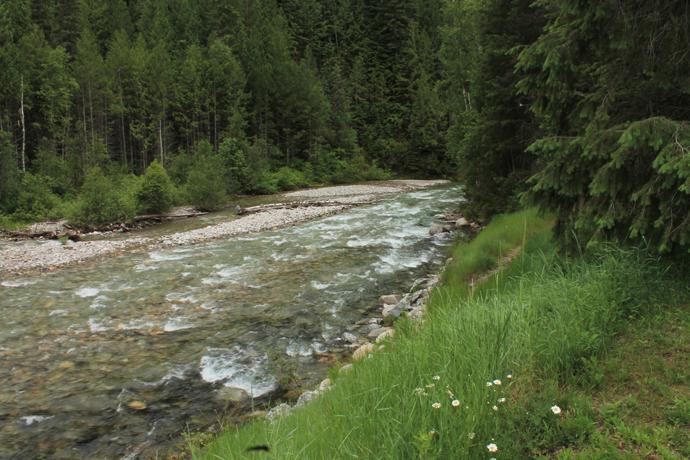נהר אחר לידו עצרנו בנקודה אחרת
