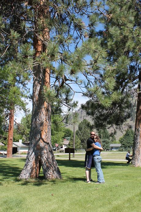 העצים המשולבים, אורן שנבנה משני גזעים צעירים. השילוב הוא מלאכת ידם של השבטים האינדיאניים ומסמל את השלום בינם לבין תושבי המקום. זוגות צעירים בעיירה תמיד אוספים איצטרובל מהעץ הזה כסימן לזוגיות מוצלחת וארוכת ימים.